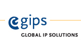 codec voip gips